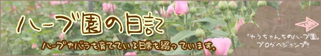 ゆうちゃんちのハーブ園 ブログ